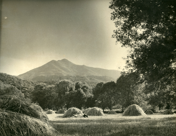 kentfield-with-mt-tam-in-the-backgroun-circa-1929