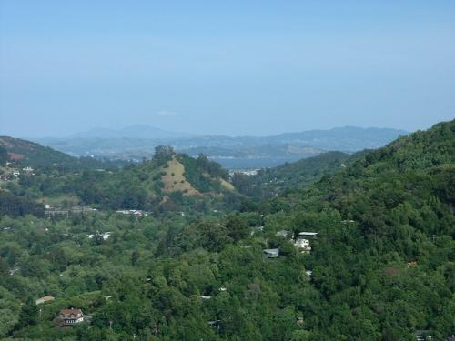 adoreen's view