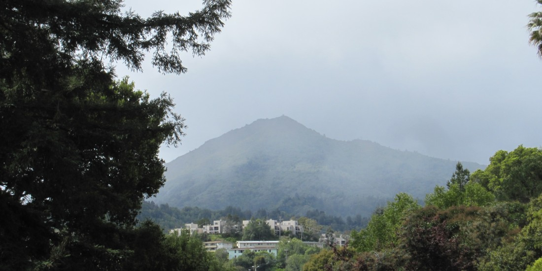 Mount Tamalpais Through The Mist As Seen From Greenbrae, taken by Kelley Eling, Marin County Realtor
