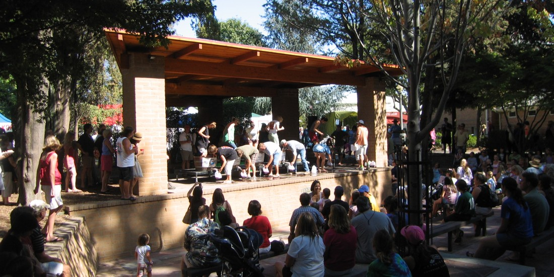 Vintage Festival Attendees on the Sonoma Plaza by Kelley Eling, Marin County Realtor