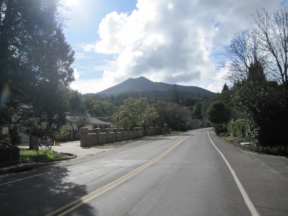 Mt. Tamalpais as seen from the flats of Kent Woodlands in Kentfield by Kelley Eling, Marin County Realtor