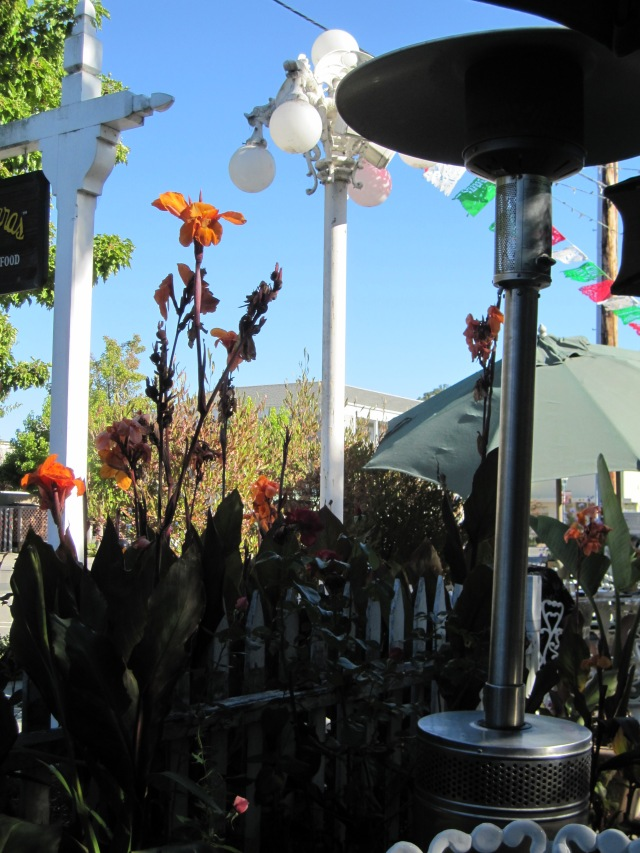 Patio in the early evening at Las Guitarras in Novato by Kelley Eling, Marin County Realtor