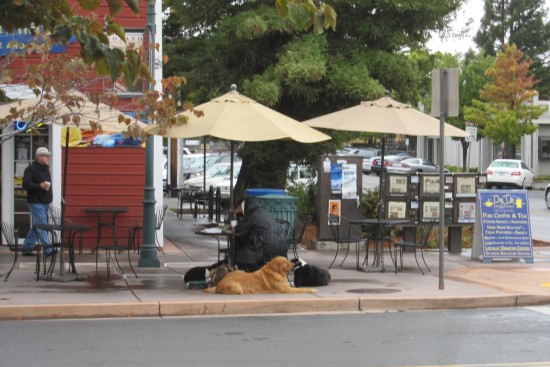 Dr. Insomnia's on Grant Avenue in downtown Novato by Kelley Eling, Marin County Realtor