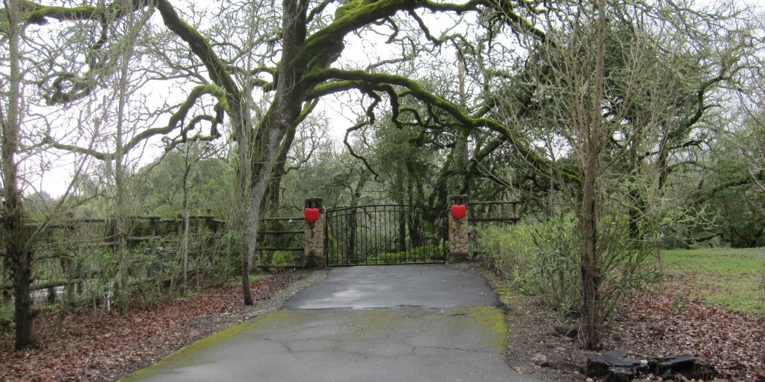 Sonoma Home In The Valentine's Spirit by Kelley Eling, Marin County Realtor