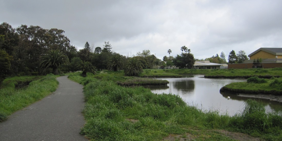 Corte Madera Town Park by Kelley Eling, Marin County Realtor