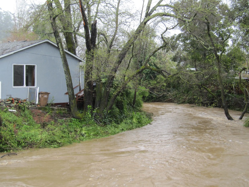 San Anselmo Home Near The Swollen Creek by Kelley Eling, Marin County Realtor