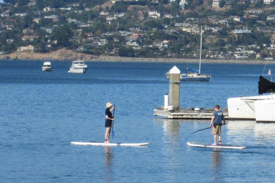 Stand Up Paddle Surfers in Sausalito by Kelley Eling, Marin County Realtor