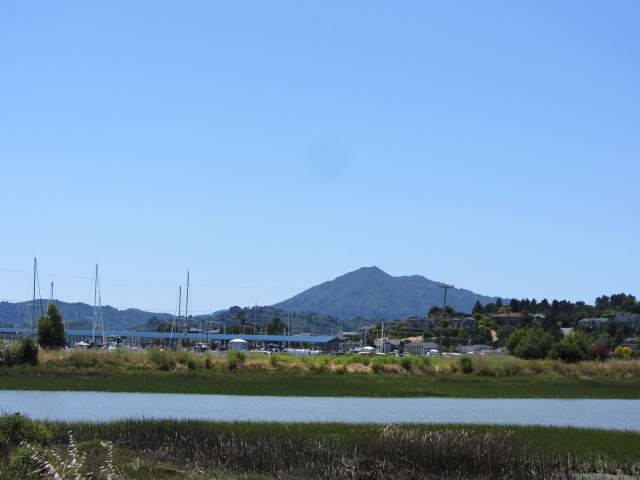 Mount Tamalpais as seen from Peacock Gap in San Rafael by Kelley Eling, Marin County Realtor