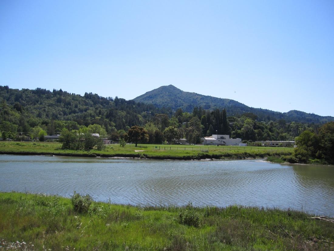 Mount Tamalpais as seen from the Kentfield Bike Path by Kelley Eling, Marin County Realtor