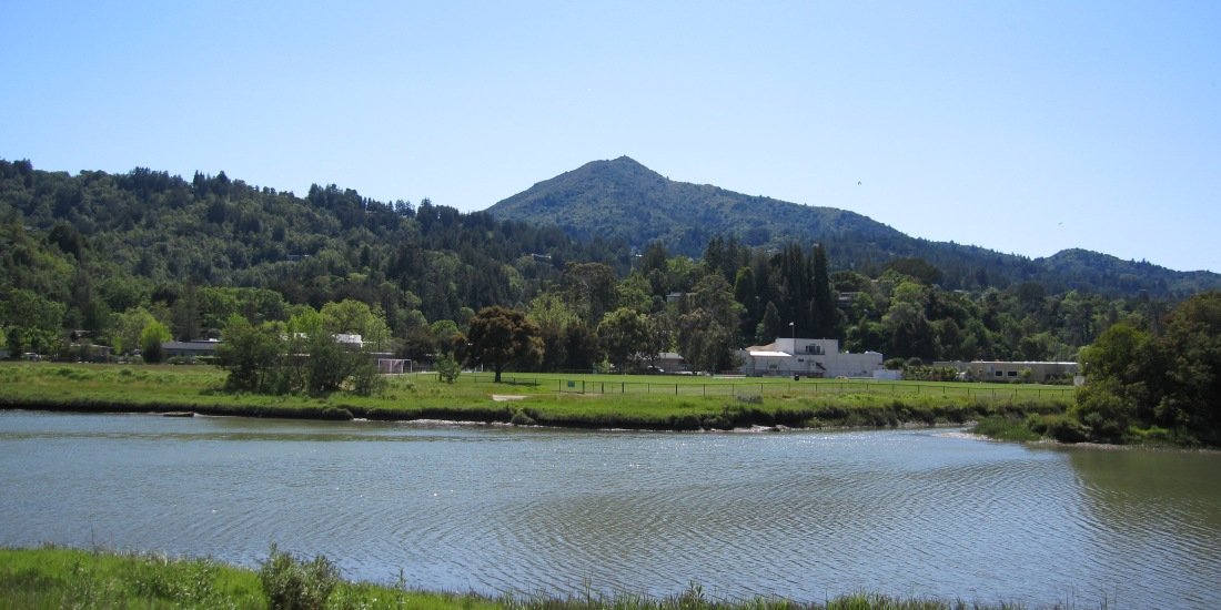 Mount Tamalpais as seen from the Kentfield Bike Path by Kelley Eling, Marin County Realtor
