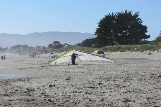 Hang Glider On Stinson Beach by Kelley Eling, Marin County Realtor