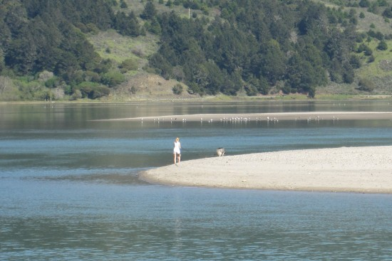 The end of Seadrift in Stinson Beach by Kelley Eling, Marin County Realtor