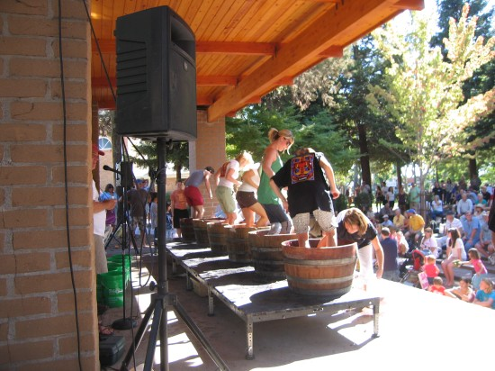 Stomping Grapes Onstage at The Vintage Festival by Kelley Eling, Marin County Realtor