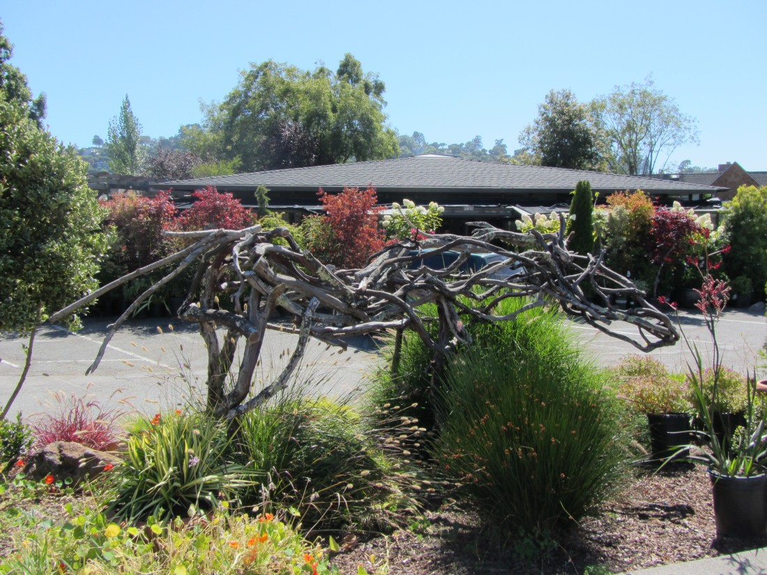 Bayside Garden Center in Tiburon by Kelley Eling, Marin County Realtor
