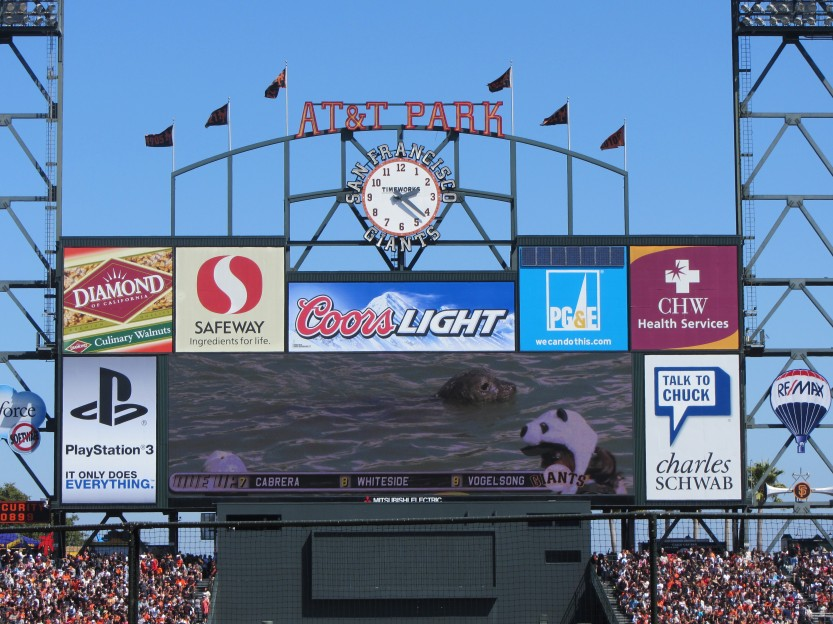 Seal Swims With Fans In McCovey Cove On The Big Screen by Kelley Eling, Marin County Realtor