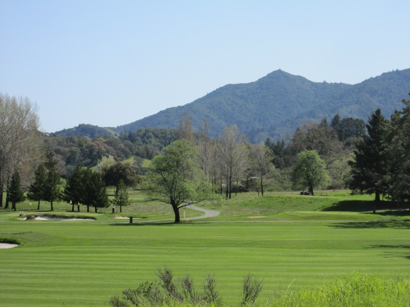 Meadow Club in Fairfax by Kelley Eling, Marin County Realtor