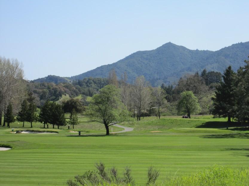 Meadow Club in Fairfax by Kelley Eling, Marin County Realtor
