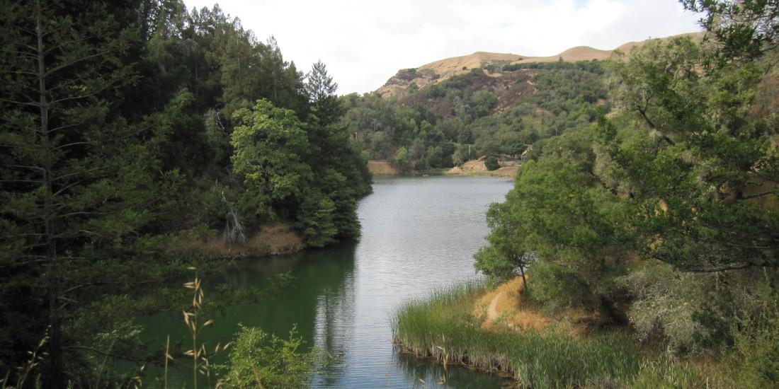 Phoenix Lake in Ross by Kelley Eling, Marin County Realtor