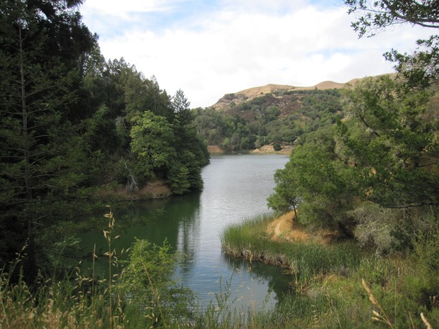 Phoenix Lake in Ross by Kelley Eling, Marin County Realtor
