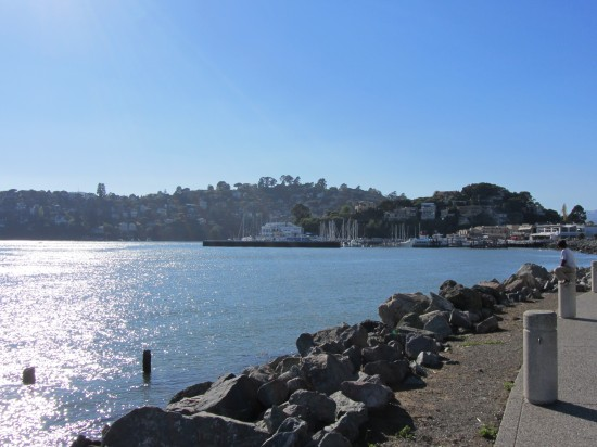 The Water Side Of Main Street in Tiburon by Kelley Eling, Marin County Realtor