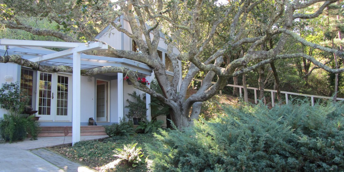Mill Valley Home by Kelley Eling, Marin County Realtor