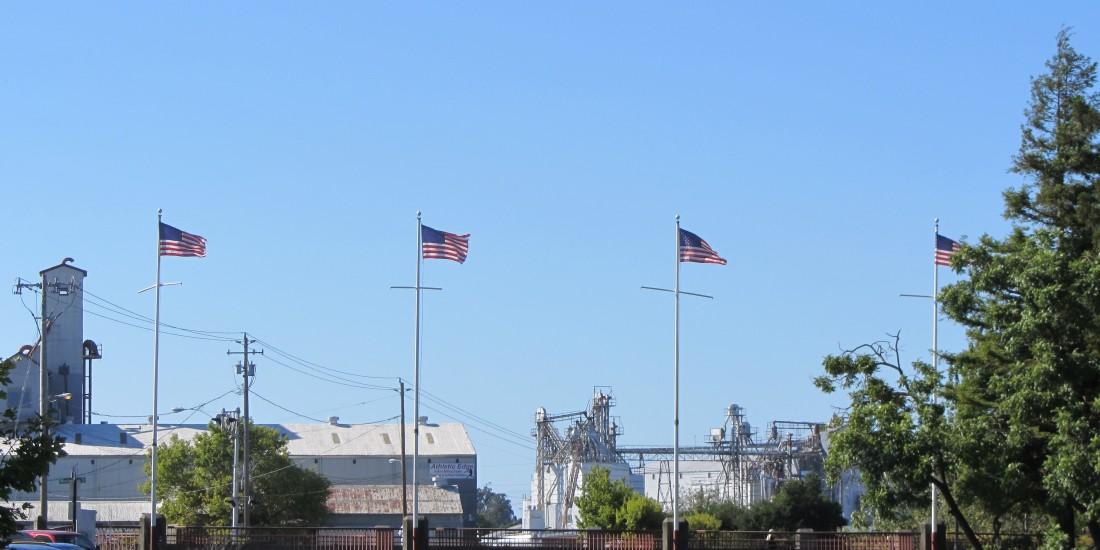 American Flags Flying In Downtown Petaluma by Kelley Eling, Marin County Realtor