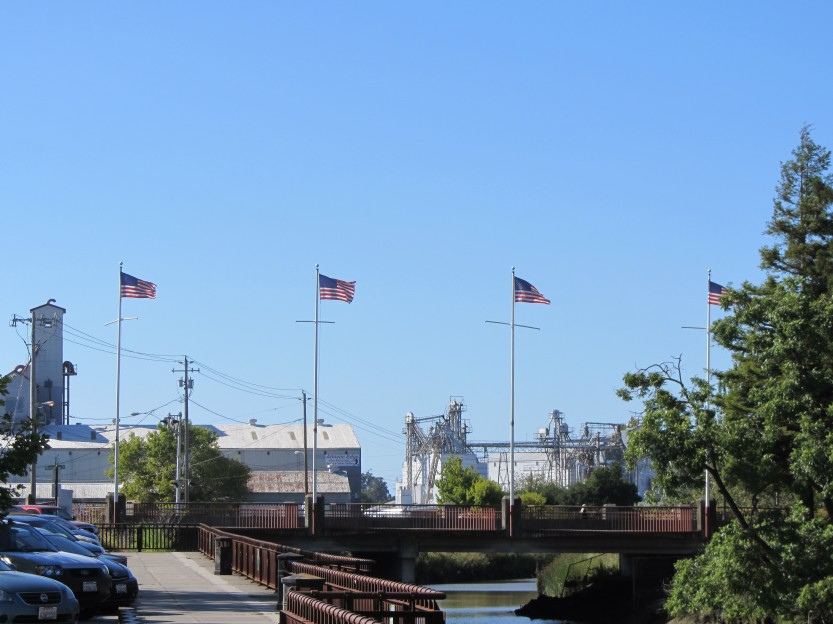 American Flags Flying In Downtown Petaluma by Kelley Eling, Marin County Realtor