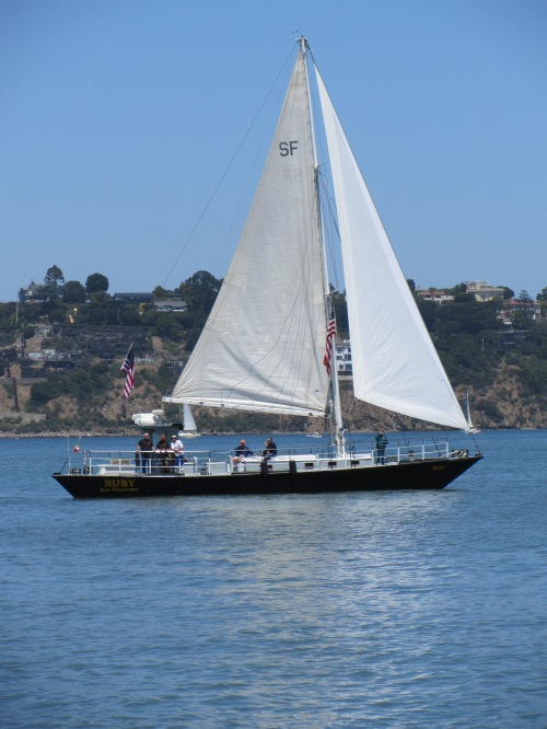 Sailing in Sausalito by Kelley Eling, Marin County Realtor