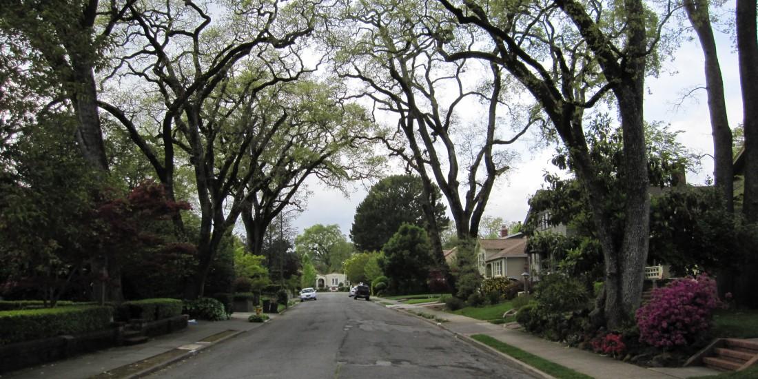 San Anselmo Neighborhood (Yolanda Park) by Kelley Eling, Marin County Realtor