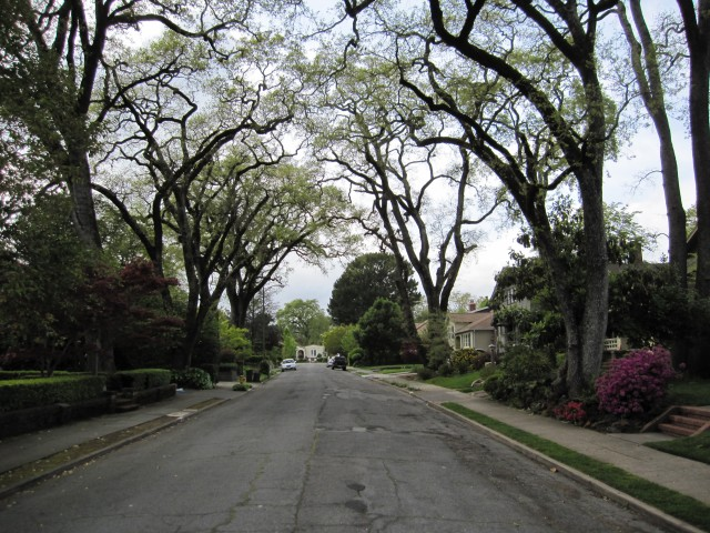 San Anselmo Neighborhood (Yolanda Park) by Kelley Eling, Marin County Realtor