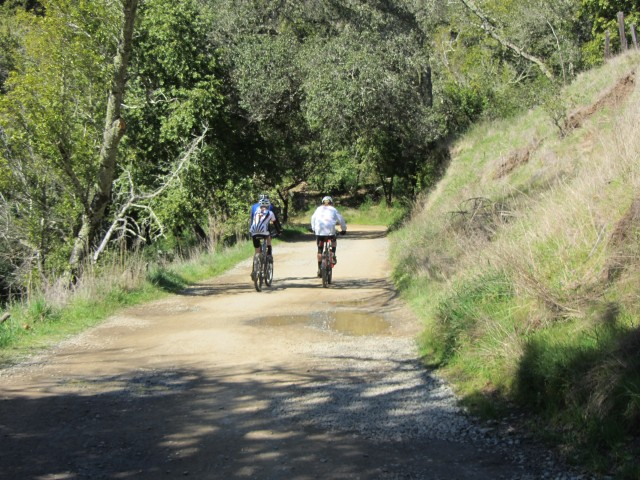 Cyclists On The Trails at Phoenix Lake by Kelley Eling, Marin County Realtor