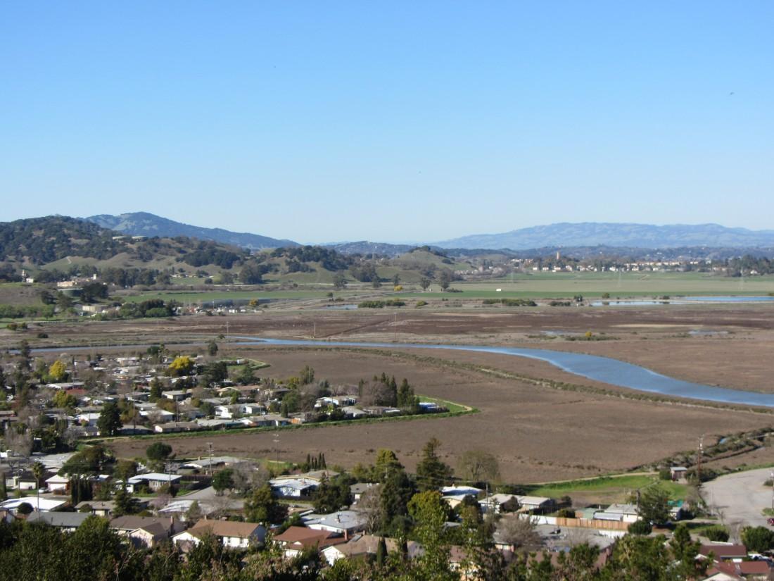 Santa Venetia Marsh Preserve in San Rafael by Kelley Eling, Marin County Realtor