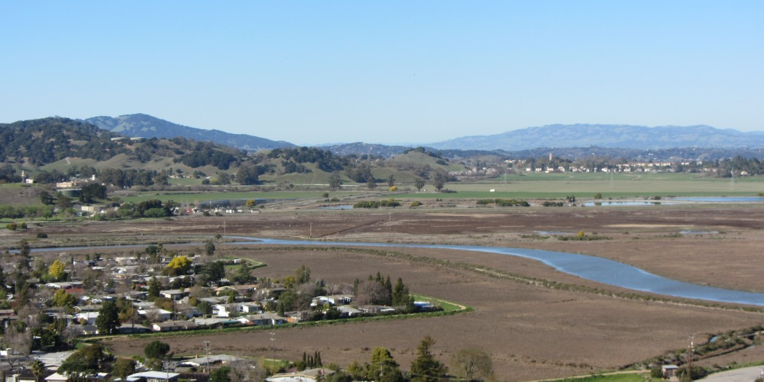 Santa Venetia Marsh Preserve in San Rafael by Kelley Eling, Marin County Realtor