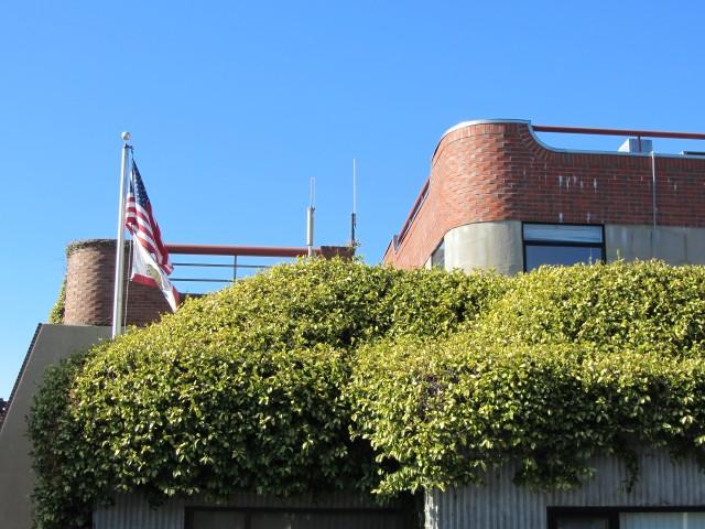 Tiburon Water Treatment Facility by Kelley Eling, Marin County Realtor