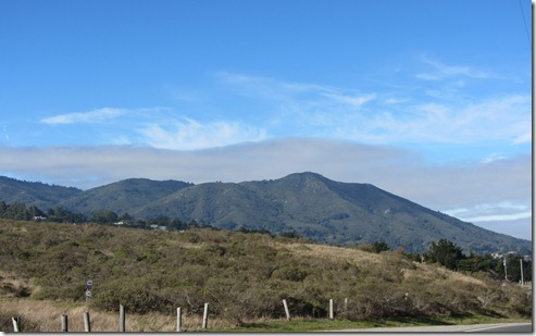 Mount Tamalpais by Kelley Eling, Marin County Realtor