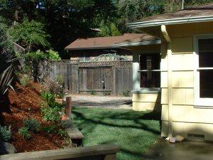 hillside in backyard