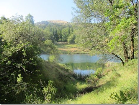 Phoenix Lake by Kelley Eling, Marin county Realtor