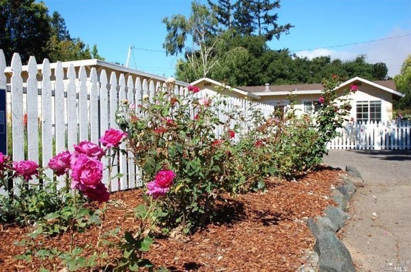 8 2219 Center Rose Garden