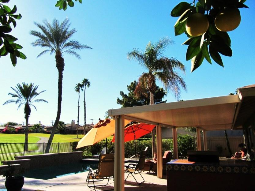 6-golfers-paradise-backyard